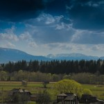 Peisaj din Comuna Panaci